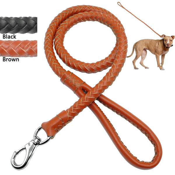 A Quality Braided Real Leather Dog Leash for Medium & Large Dogs