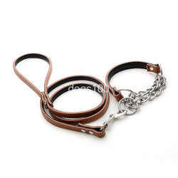 Leather Dog Leash & Half Choke Collar for Training