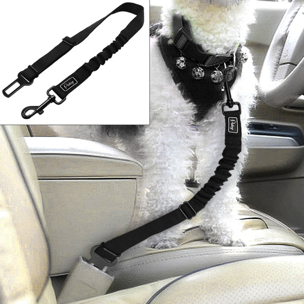 A Dog Leash that Secures to the Vehicle