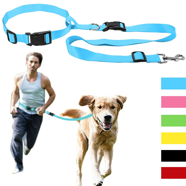 Strong, Dog Leash For Jogging, Hiking & Walking with Hands Free for Low Price