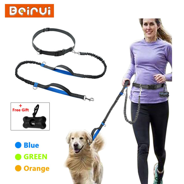 A Special Dog Leash Combined with a Special Body Belt for Hiking, Training and Running