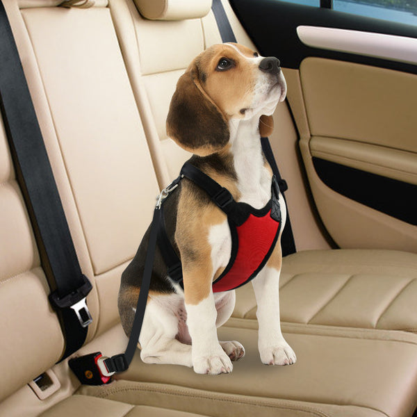 Adjustable Dog Car Harness with a Seat Belt For Medium & Large Dogs