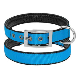Adjustable Dog Collar, Durable & Padded, with Metal D Ring for Medium & Large Dogs