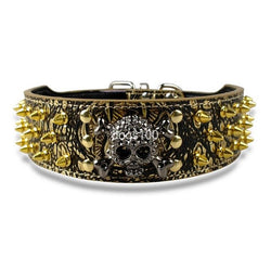 Leather Dog Collars with Gold Spikes, Studded and Skull Charm For Medium & Large dogs