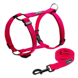 A Beautiful Dog Harness & Leash Set for Small, Medium & Large Dogs