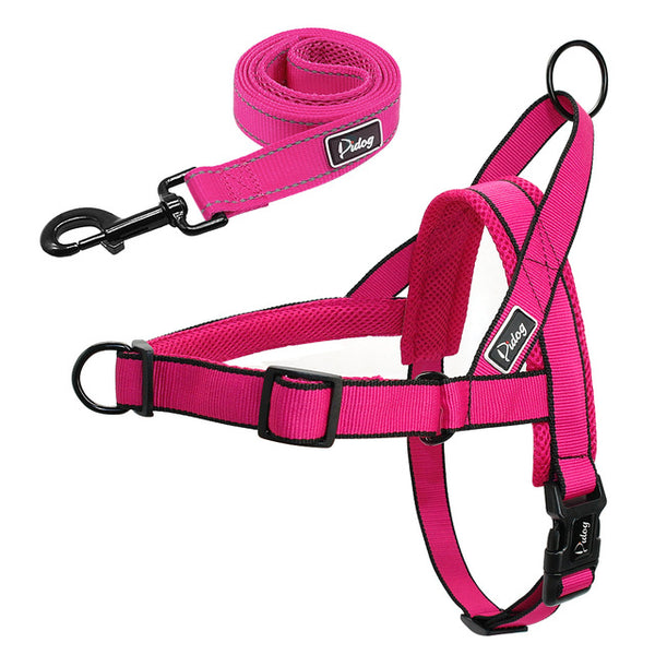 A Popular Dog Harness & Leash Set for Small, Medium & Large Dogs