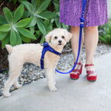 A Quality Leather Dog Harness and Leash Set with Rhinestones for Small & Medium Dogs