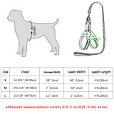 A Leather Dog Harness & Leash Set For Small & Medium Dogs