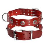 Durable Genuine Leather Dog Collar with Vintage Style For Medium Dogs