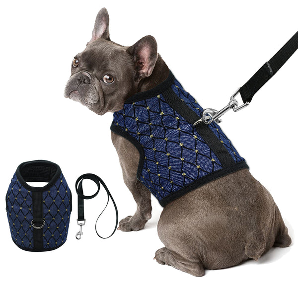 A Breathable Dog Harness & Leash Set for Small & Medium Dogs