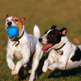 Dog Toy - Rubber Chew Balls Suitable for Small and Medium Size Dogs for Playing & Training