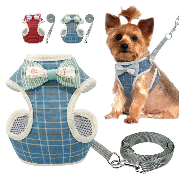 A Stylish Harness and Leash Set For Small & Medium Dogs