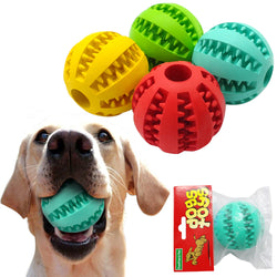 A Rubber, Ball Dog Toy for Biting & Playing