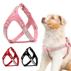Soft, Suede Leather Dog Harness Designed with Rhinestones