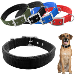 A Beautiful Dog Collar - Padded & Soft Liner For Neck Protection For Small, Medium & Large Dogs
