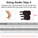 A Unique Dog Knee Brace - Supports the Dog's Ankle, for Medium & Large Dogs