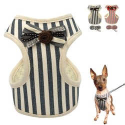 A Mesh Pet Harness and Leash Set for Cats & Small Dogs at a Low Price