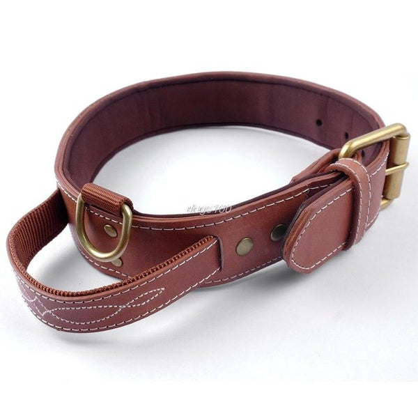 Real Leather, Professional Dog Collar for Large &  Medium Dogs