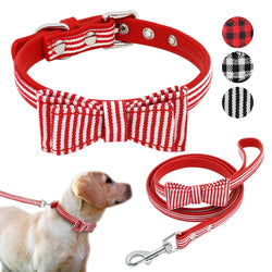 Designed Leather Dog Collar and  Leash Set for Small & Medium Dogs