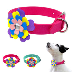 A Leather Collar Desined with a Flower for Cats & Puppies