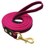 Long Dog Leash for Training ,Walking Leads 2m 3m 5m For Medium & Large Dogs
