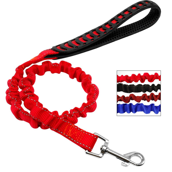 Special Elastic, Dog Leash for Large, Medium & Small Dogs