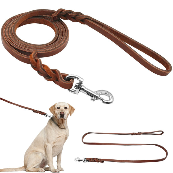 Beautiful Leather Braided Leash for Medium & Large Dogs