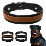 Real Leather Dog Collar Suitable  for Medium and Large Dogs Like a Pitbull, Rottweiler, Bulldog   & Labrador