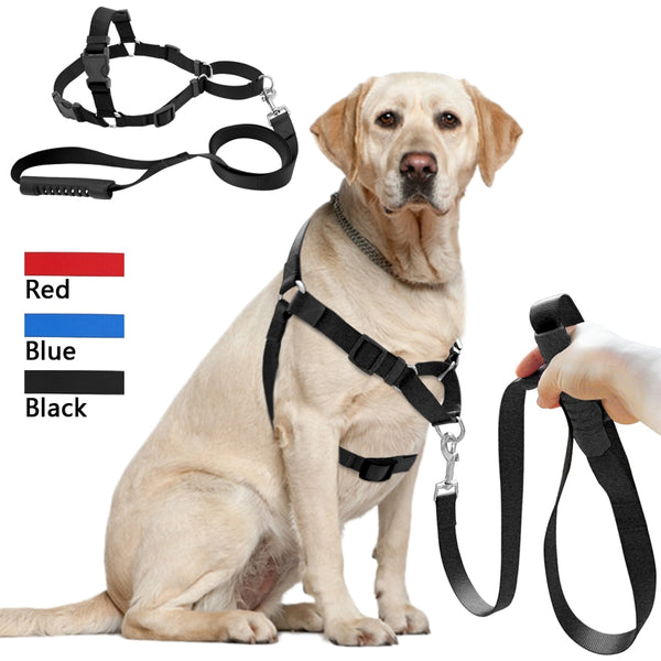 A Dog Harness & Leash Set for Training and Walking, For Medium & Large Dogs