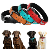 Real Leather Dog Collar Custom  For Large, Medium & Small Dogs