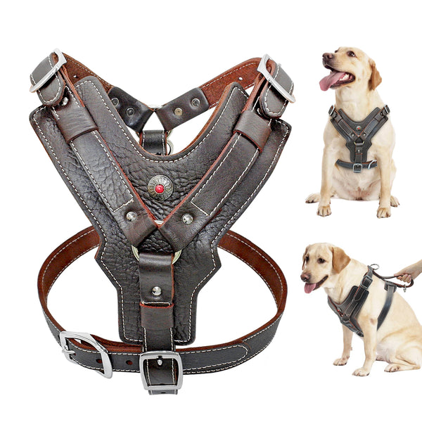Genuine Leather Dog Harness With a Handle  For Big Dogs