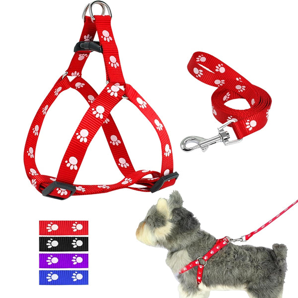 A Low Priced, Popular Dog Harness and Leash Set for Small & Medium Dogs