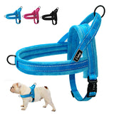 Dog Harness for Small, Medium & Large Dogs at a Low Price