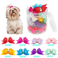 2 pc set of Amazing Pet Hair Bows for Dogs & Cats