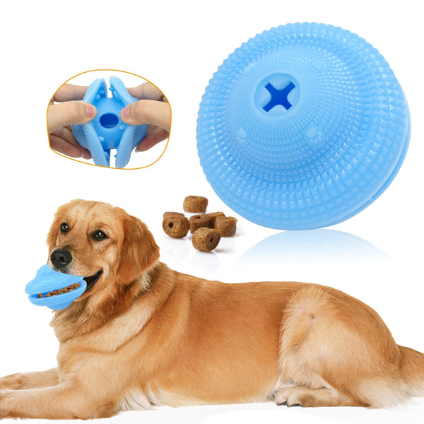 A Flexible, Chew, Dog Toy that Also Helps Clean the Dog's Teeth
