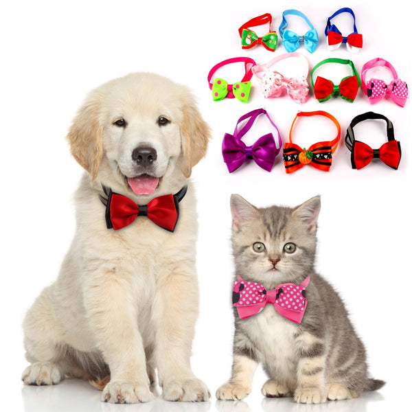 10 pc Pet Hair Bows Designed as a Tie for Small Dogs & Cats