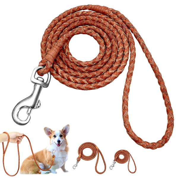 Braided Leather Leash For Small & Medium Dogs