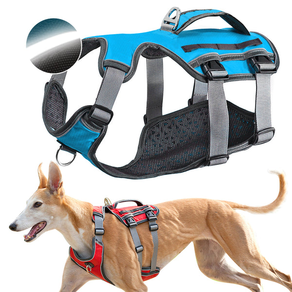 A Beautiful High Quality Dog Harness for Large and Medium Sized Dogs