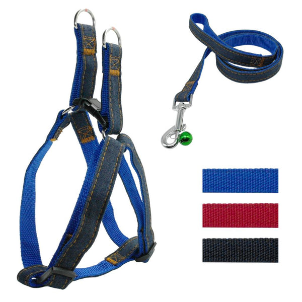 A Popular Dog Harness and Leash at a Low Price For Small & Medium Dogs
