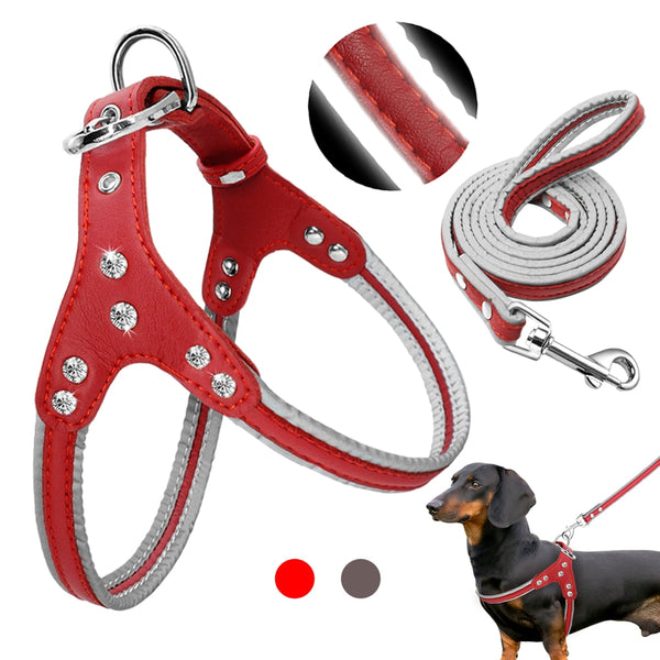High Quality Leather Dog Harness & Leash Set Designed with Rhinestones
