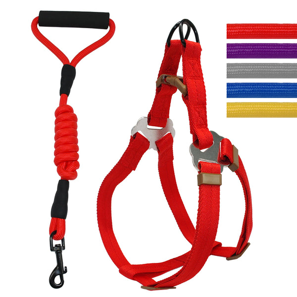 A Solf Dog Harness And Leash set with a Comfortable Handle for Small & Medium Dogs