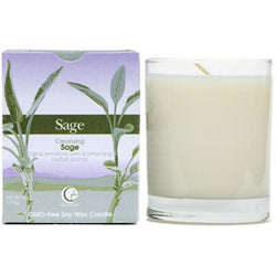 Sage - Clear Glass Tumbler