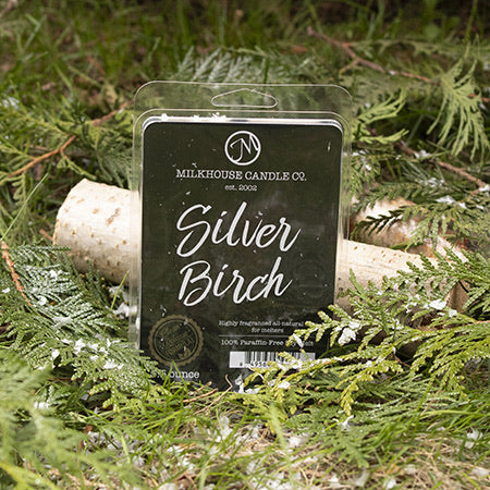 Creamery Collection Silver Birch Fragrance Melt