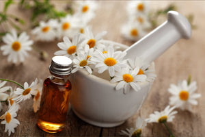 Benefits of Roman Chamomile Essential Oil