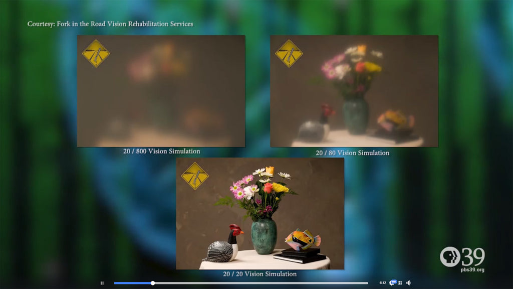 Pennsylvania's PBS39 used our vision images to explain sight issue