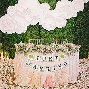 Just Married Banner Gold Glitter