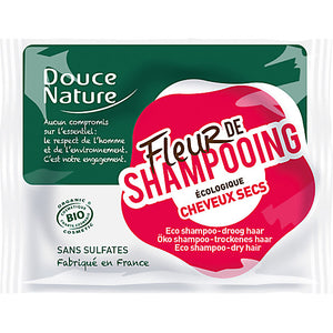 solid shampoo for dry hair