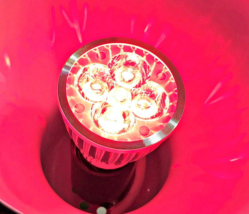 RubyLux All Red LED Bulb - Small - 2nd Generation - 220V for EUROPE