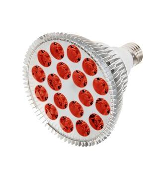 RubyLux All Red LED Bulb - Size Large – 2nd Generation -  220 V for Europe