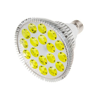 RubyLux All Yellow LED Bulb - Size Large – 2nd Generation  - 120V for US